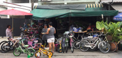 Bike Shop and Repairs