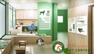 Vet 4 Animal Hospital