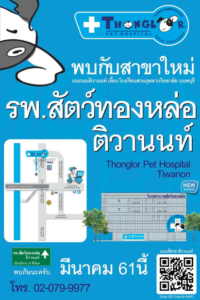 Thonglor Veterinary Hospital – Tiwanon