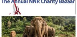 NNR Bazaar Fund rasing Allocation